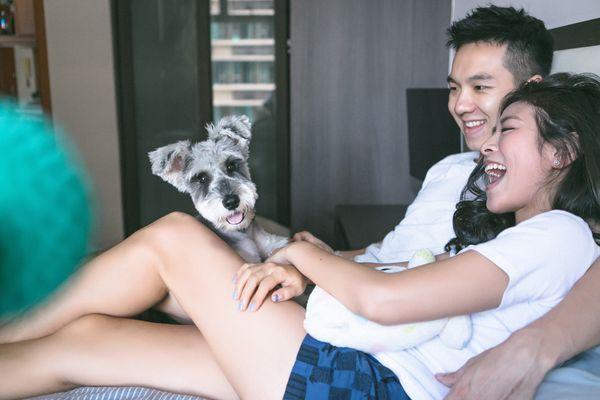 lindo cachorro schnauzer con pareja de asiáticos