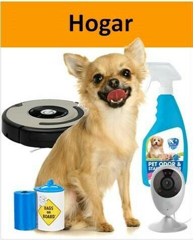 chihuahua con artículos para limpieza del hogar