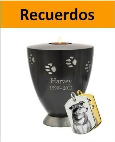 artículos para recordar a tu perro